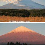 Red Mt. Fuji, Shizuoka