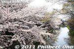 thumb_hb352-20110414_7643.jpg