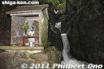 thumb_fd110-20110617_1207.jpg