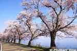 thumb_ko125-20090410_9385.jpg
